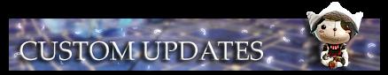 14. Custom Update.png