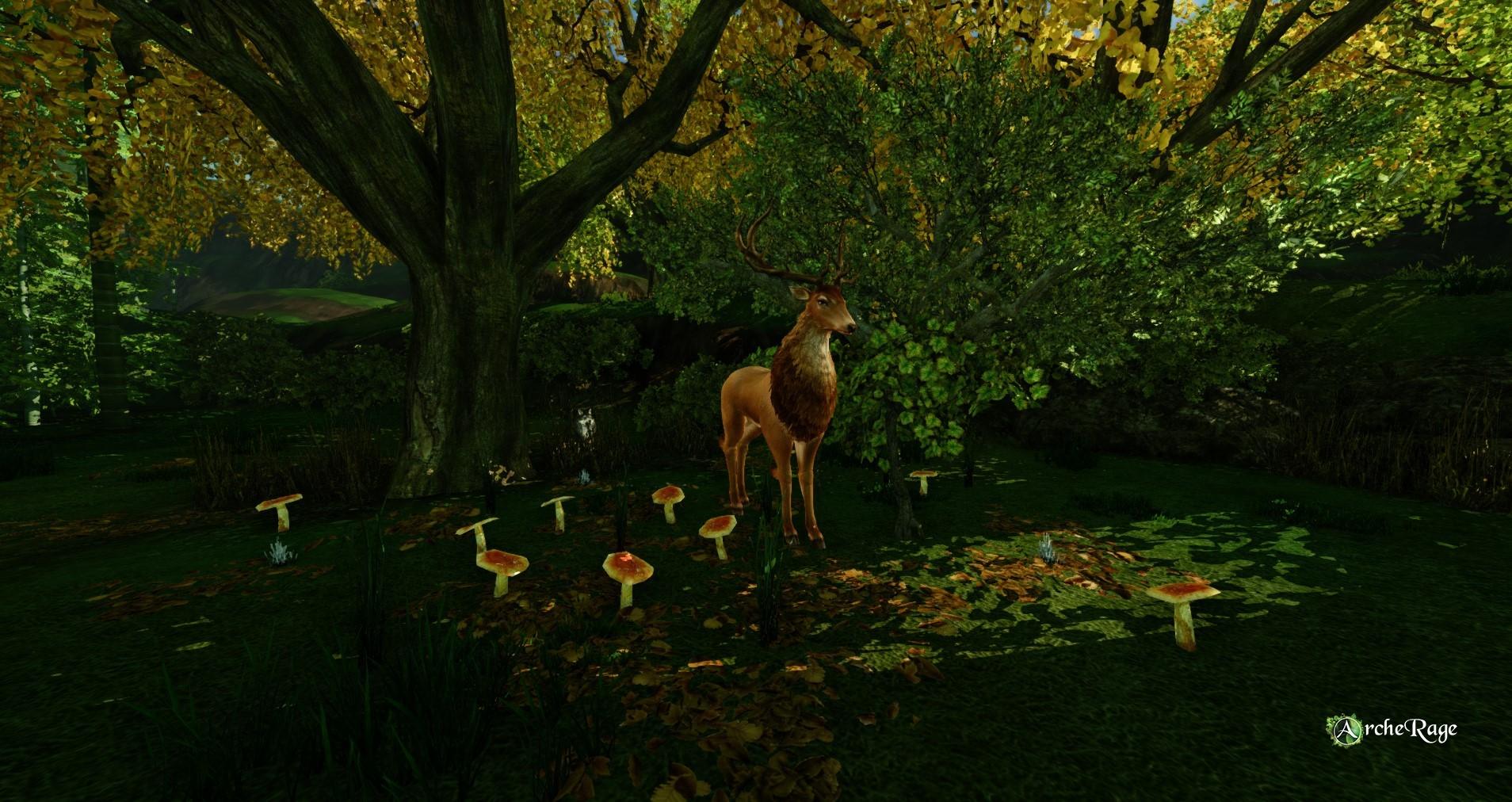 autumn vibes option 3.jpg