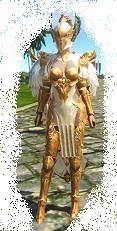 Guardian costume.jpg