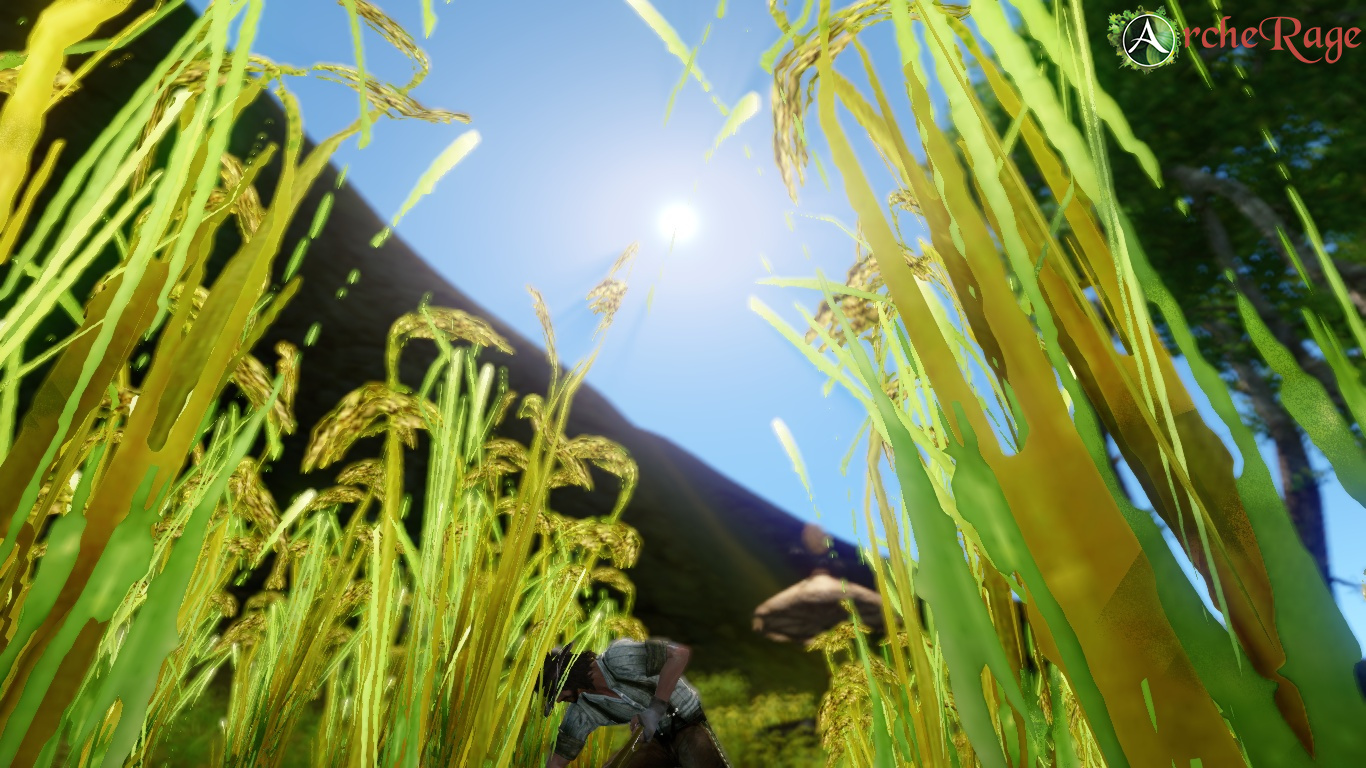 Harvesting Season!.jpg