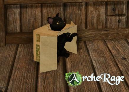 Inbox Black Cat Housepet.png