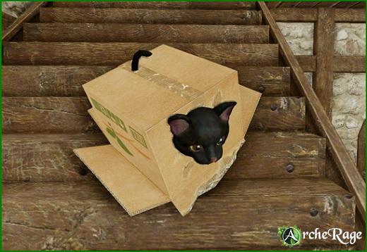 Inbox Black Cat Housepet_1.jpg