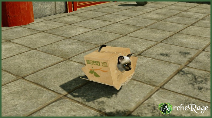 Inbox Seal-Point Housepet.png