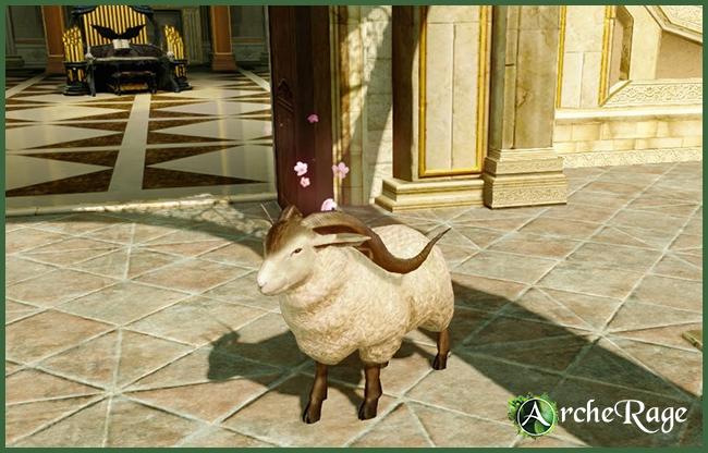 Lil' Sheepie.jpg
