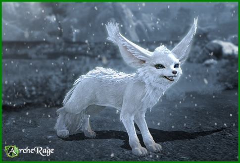 Moonsand Fox.jpg