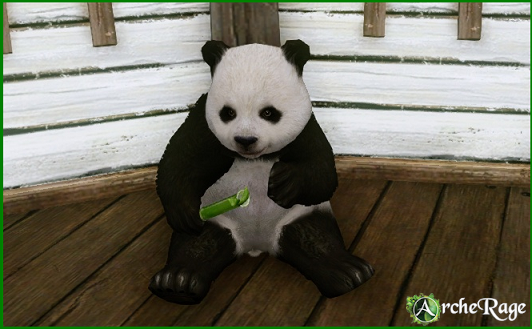 Panda_decor.png