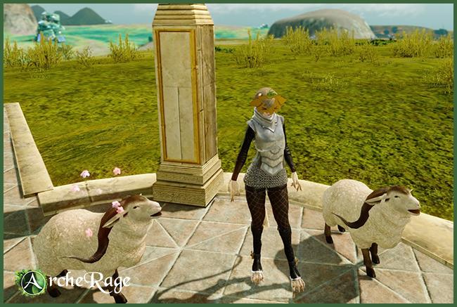 Sheepie.jpg