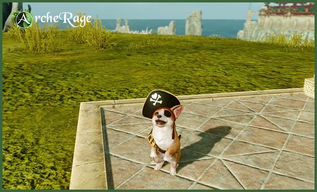 Welsh Pirate Corgi.jpg