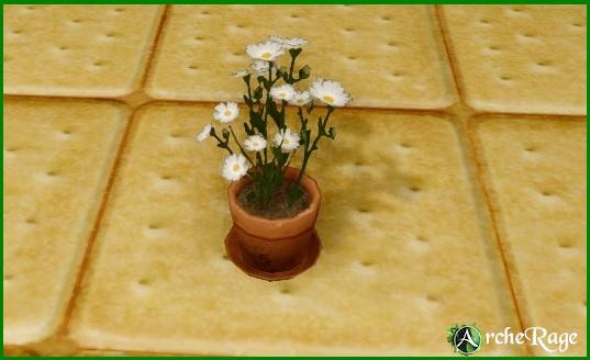 White Flowers Pot.jpg